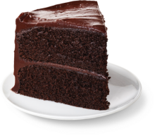 Rich Chocolate Cake - Slice